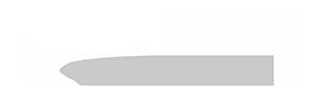 Logo-PNG-TRANSPARENT 290